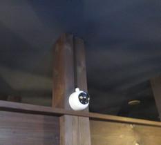埼玉県越谷市のレストランに防犯カメラ設置